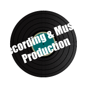 Recording and Music Production spinning vinyl services icon